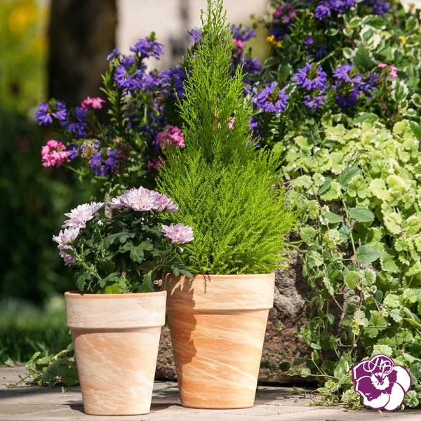 Vase Haut XL Pot Terre Cuite